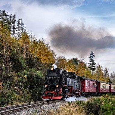 Harz steam train