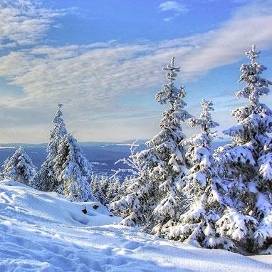 Harz in Winter