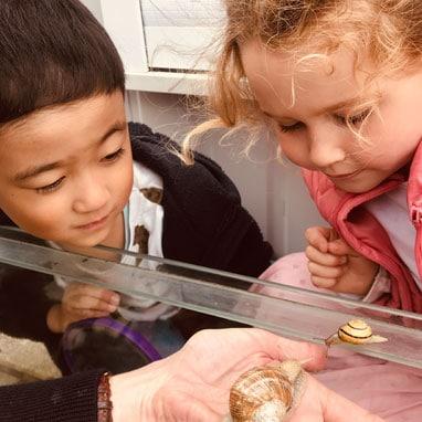 kindergarten snail