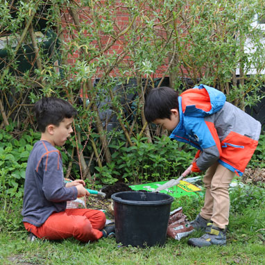 Grade 1 students working in Growing Garden