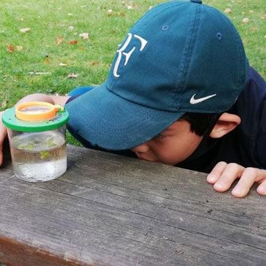 Grade 4 student examining water sample
